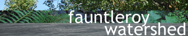 Fauntleroy watershed