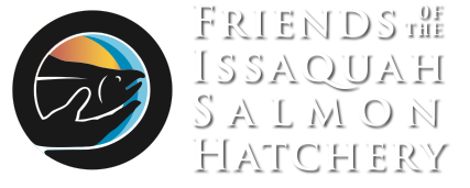 Friends of the Issaquah Salmon Hatchery