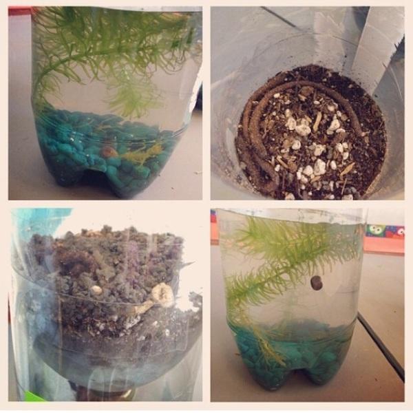 Mini Biomes