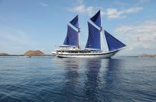 Cruise 10